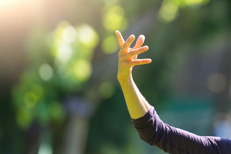 Healing Tao lessen in Drenthe